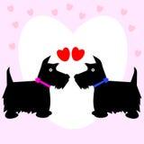valentin för scottie för parhundförälskelse Royaltyfria Bilder