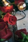 Valentin: Fokus på Rose Bud With Water Droplets Royaltyfria Bilder