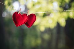 Valentin kort för daghälsning med ett par av röda hjärtor royaltyfria bilder