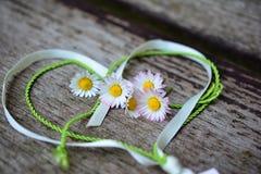 Valentin s-dag Daisy Flower Wishing Card arkivbild