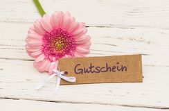 Valentin`s Day or Mother`s Day gift with pink flower and gift tag with german word Gutschein, means voucher and pink flower. Pink gerbera daisy flower with tag Stock Photo