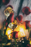 Valentin: Slut av av enkla röda Rose Bud Sitting On Champagne Arkivfoto