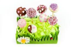 Valentin tårtapop Royaltyfria Bilder