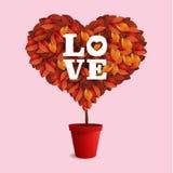Valentin växt Royaltyfri Foto