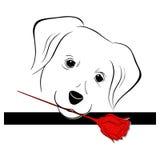 Valentina dog. A illustration of Valentina dog graphic Stock Photos