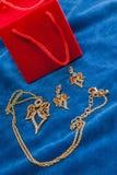 Valentindagdiamant, necklase, earingsgåva royaltyfria bilder