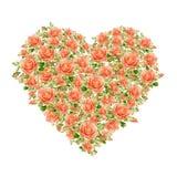 Valentindaghjärta som göras av vattenfärgrosor royaltyfria foton