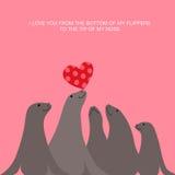 Valentine's-Tageskartendesign mit Seelöwen und -herzen Stockfotos