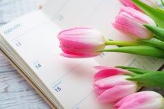 Valentine's-Tagesstillleben mit empfindlichen rosa Tulpen Stockfotos