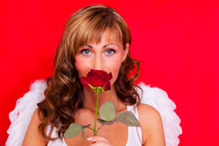 Valentine  angel Stock Photography
