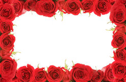 Valentine or Anniversary Red Roses Framed. Around Blank Message Space for Your Text or Image Stock Images