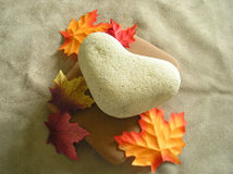 Valentine Autumn Fall Heart Rock Stone. Valentine heart shaped rock on flat square stone surrounded by leaves Stock Image