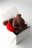 Valentine bear Stock Image