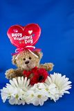Valentine Bear Foto de Stock Royalty Free