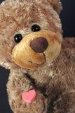 Valentine bear royalty free stock photos
