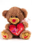 Valentine Bear Stock Photos