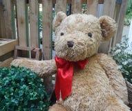 Valentine Bear Royalty-vrije Stock Afbeeldingen