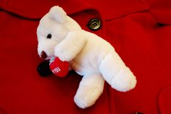 Valentine Bear On Coat. Little stuffed bear attached to a woman's red winter coat Stock Photo