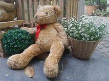 Valentine Bear sammanträde och lutar på blommakorg Arkivbilder