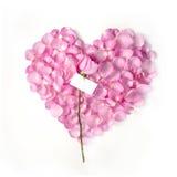 Valentine blank note Royalty Free Stock Photos