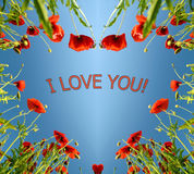 Valentine card as heart with poppies in sun`s glow (February 14, Royalty Free Stock Image