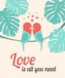 Valentine Card con los loros Vector la ilustración, EPS10 Fotografía de archivo