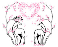 Valentine card design vector. Two beautiful deers and blossoming spring tree Stock Photography
