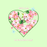 Valentine card with love on Valentine`s Day. Cherry blossoms, sa Royalty Free Stock Photos