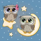 Valentine card with Lovers Owls. On a moon and star royalty free illustration
