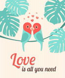 Valentine Card with Parrots. Vector illustration, eps10. Stock Photography