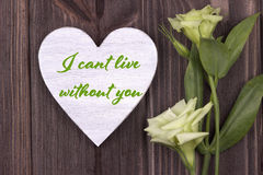 Valentine card with text I cant live without you green stock photo