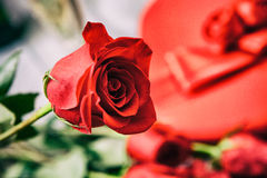 Valentine: Close Up On Single Rose With Candy And Champagne Behi Stock Photography