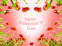 Valentine comme coeur avec des pavots (14 février, amour) Photographie stock