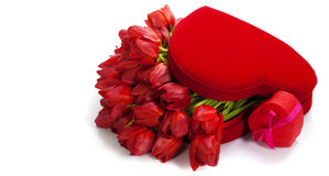 Valentine composition with red tulips Royalty Free Stock Image