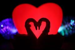 Valentine concept Stock Images