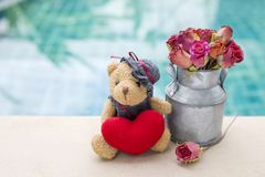 Valentine concept background of cute teddy bear with red heart and rose paper flower pot Royalty Free Stock Photos