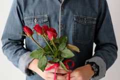 Valentine concept, Man holding red roses on white background. Valentine concept, Man holding red roses on white wall background Royalty Free Stock Photography
