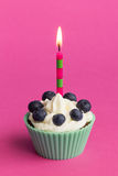 Valentine Cupcake Lizenzfreies Stockbild