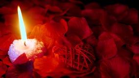 Valentine-dag met lengte van decoratieliefde, kaars het branden en nam bloemblaadjes toe stock video