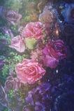 Valentine Day, Bildhintergrund der abstrakten Kunst der rosafarbenen Blume, Weinlesefilterbild Lizenzfreies Stockfoto