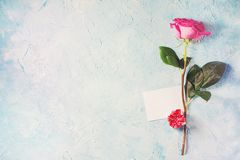 Valentine day card - one pink rose with gift and note on blue te. Xture. Copy space Stock Images