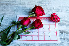 Valentine Day. Celebrating romance together Royalty Free Stock Images