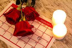 Valentine Day. Celebrating romance together Royalty Free Stock Image