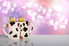 Valentine day concept. Sweet cows hug each other as a form of tw stock photography