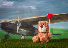 Valentine day concept. Teddy bear with heart is sitting on the g Stock Images