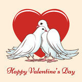 Valentine day couple dove Royalty Free Stock Photo