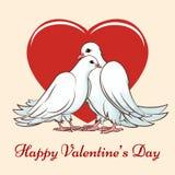 Valentine day couple dove Royalty Free Stock Photo