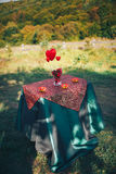 Valentine day decor.love story. decorated table ,hearts , romant. Ic dinner outdoors Royalty Free Stock Photos