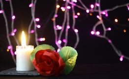 Valentine day decoration with lamp, flower and candle burning photoshoot. Collection royalty free stock image