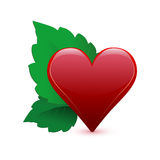 Valentine day heart and leaf Stock Images